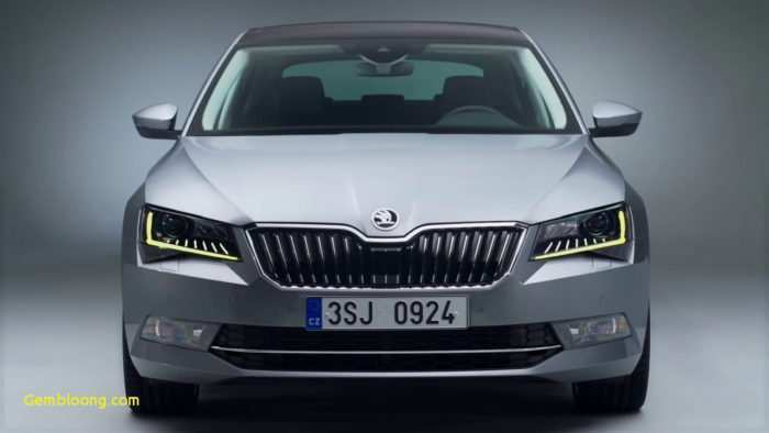 11 The 2019 Skoda Octavia India Egypt New Model And Performance