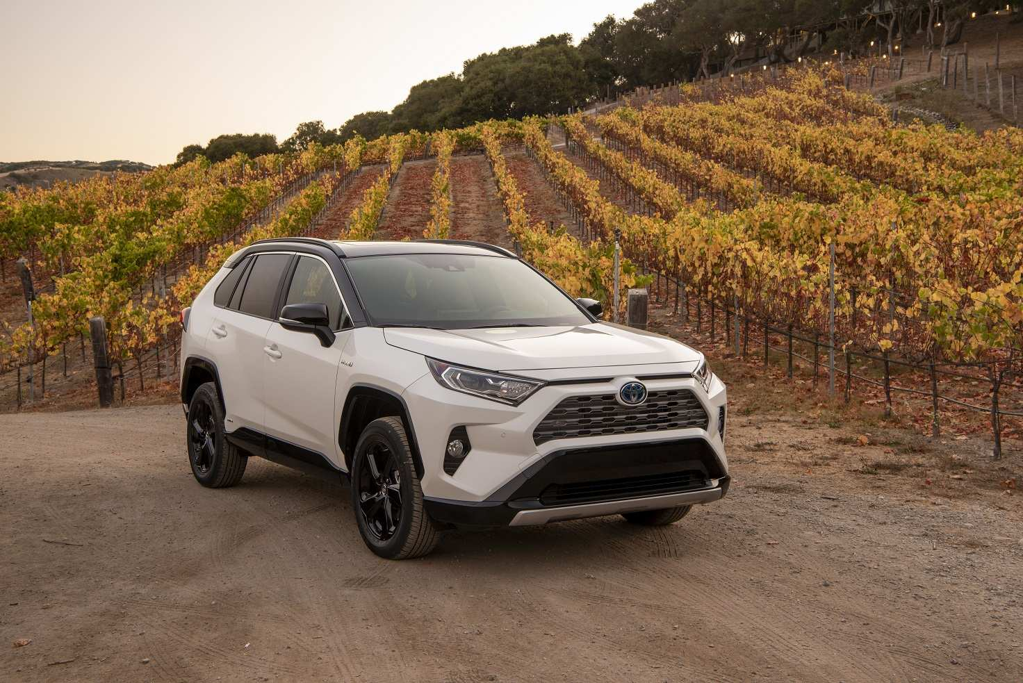 13 The 2019 Toyota RAV4 First Drive
