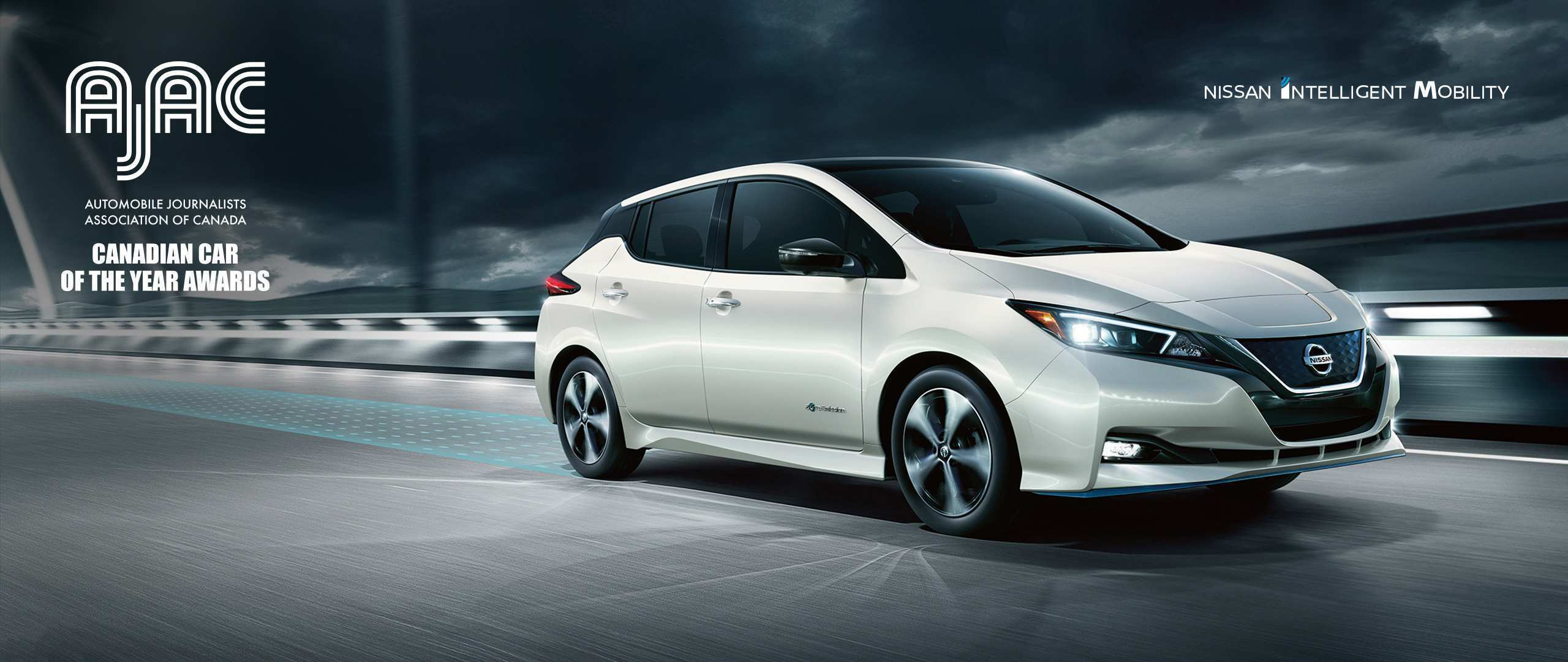 21 New 2019 Nissan Leaf Release