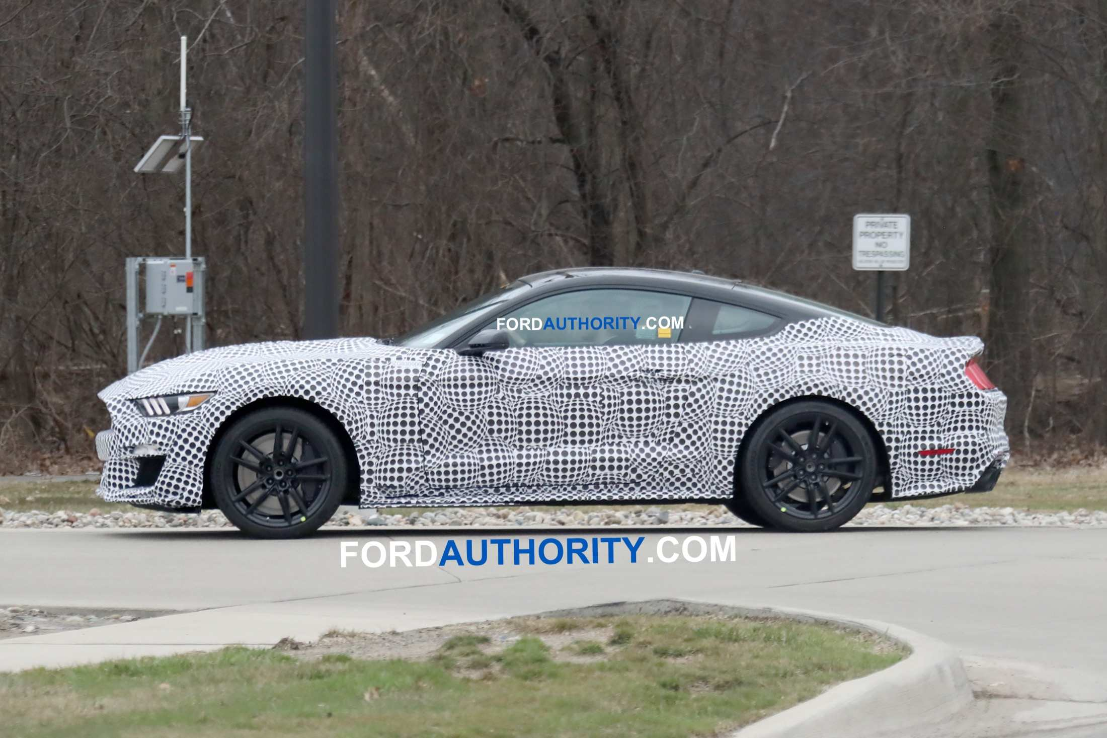 36 All New 2020 The Spy Shots Ford Mustang Svt Gt 500 Redesign