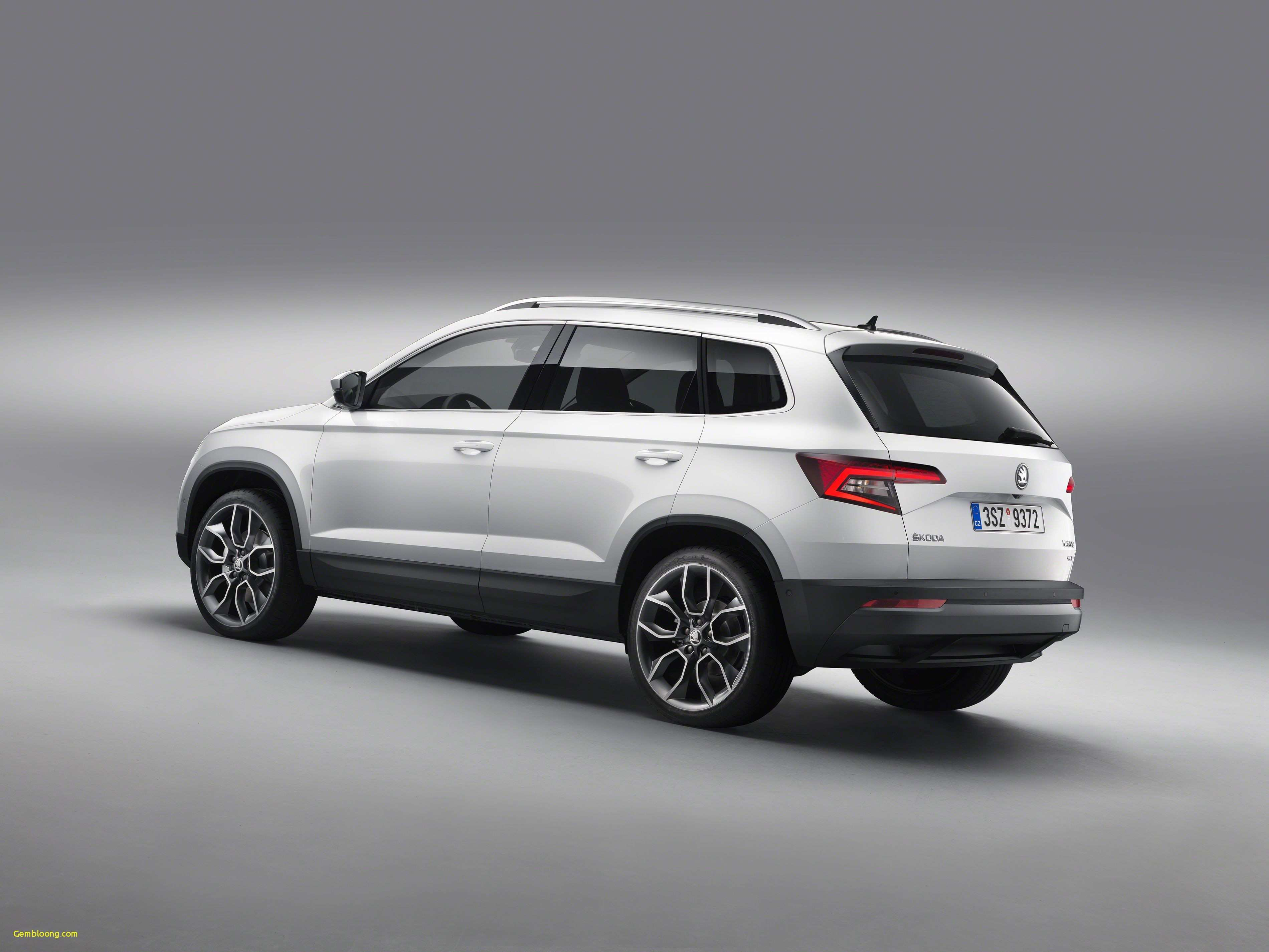 40 The Best 2019 Skoda Snowman Release Date And Concept