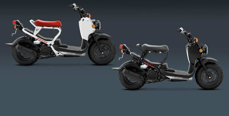 49 Best Honda Zoomer 2020 Pictures