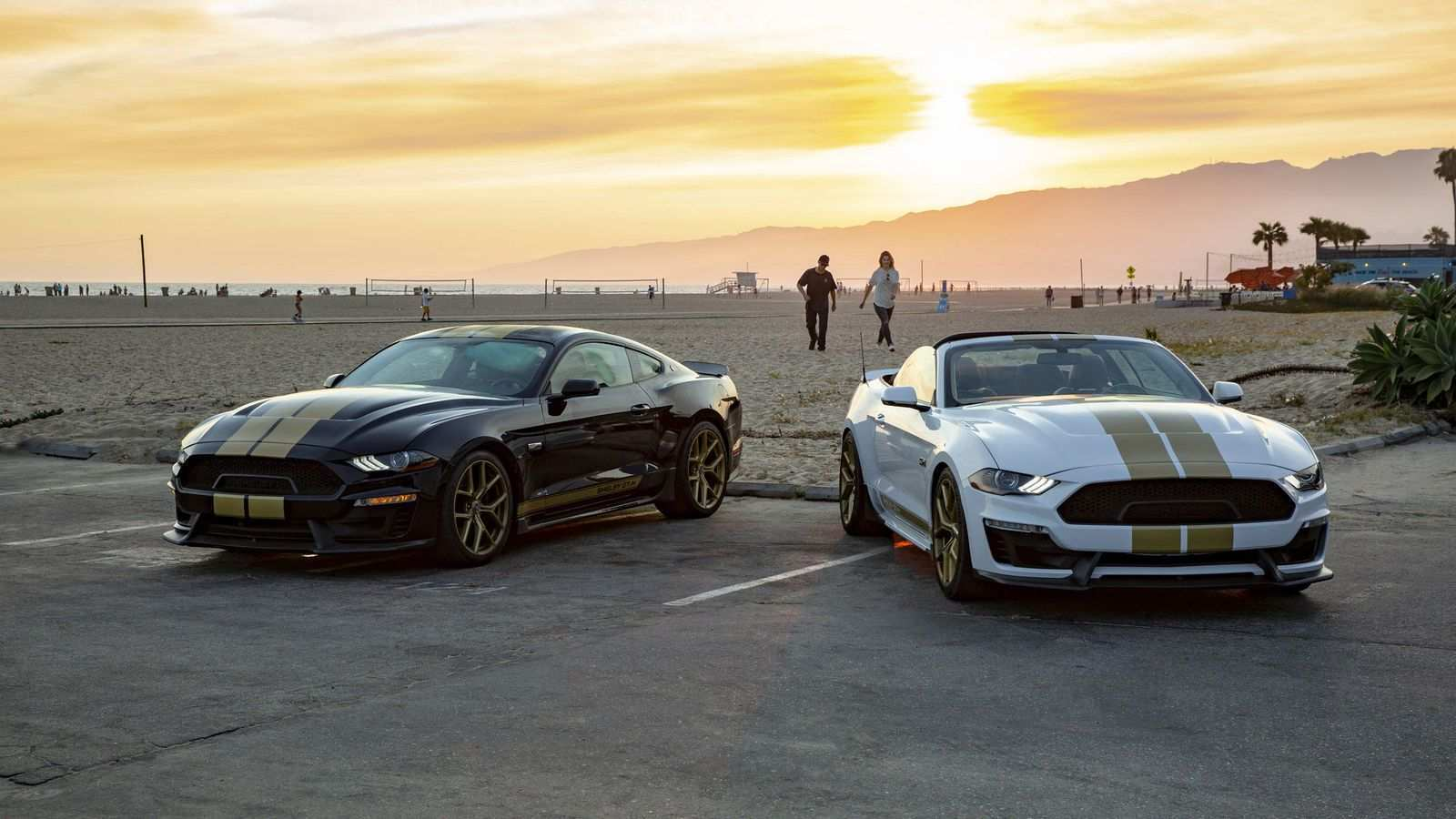 50 All New 2019 Mustang Shelby Gt350 Pictures