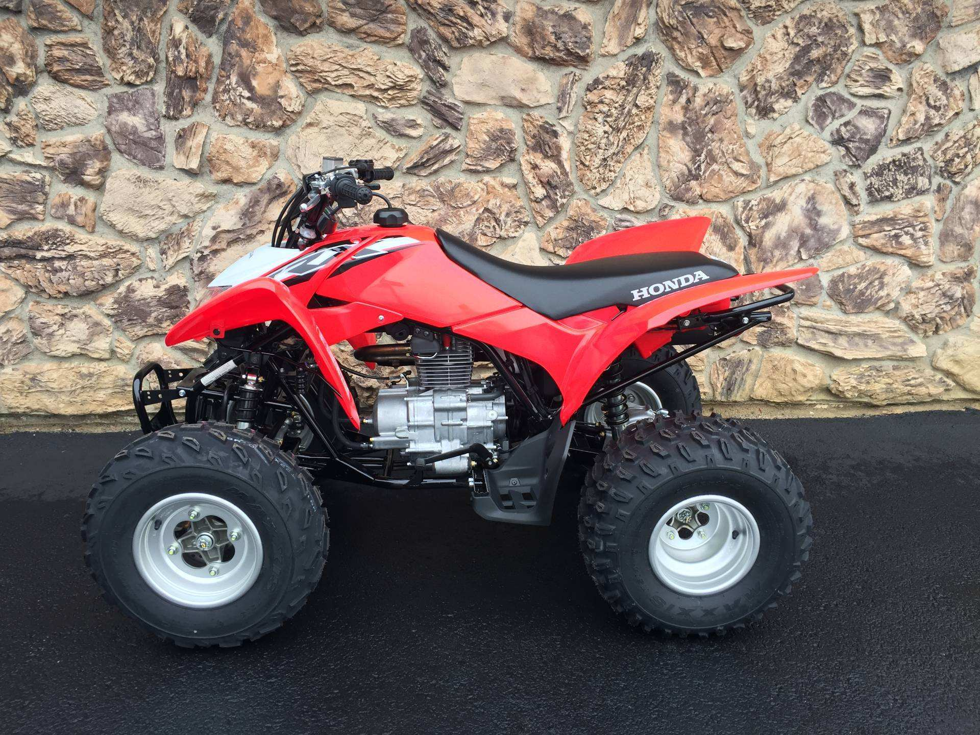 57 All New 2019 Honda Trx250X Price And Release Date