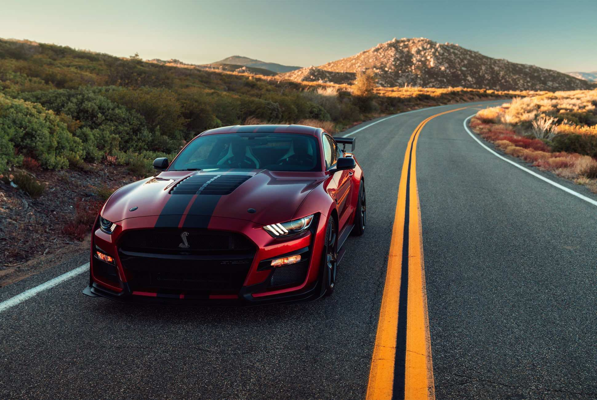 62 Best 2020 Ford Mustang Shelby Gt500 New Concept