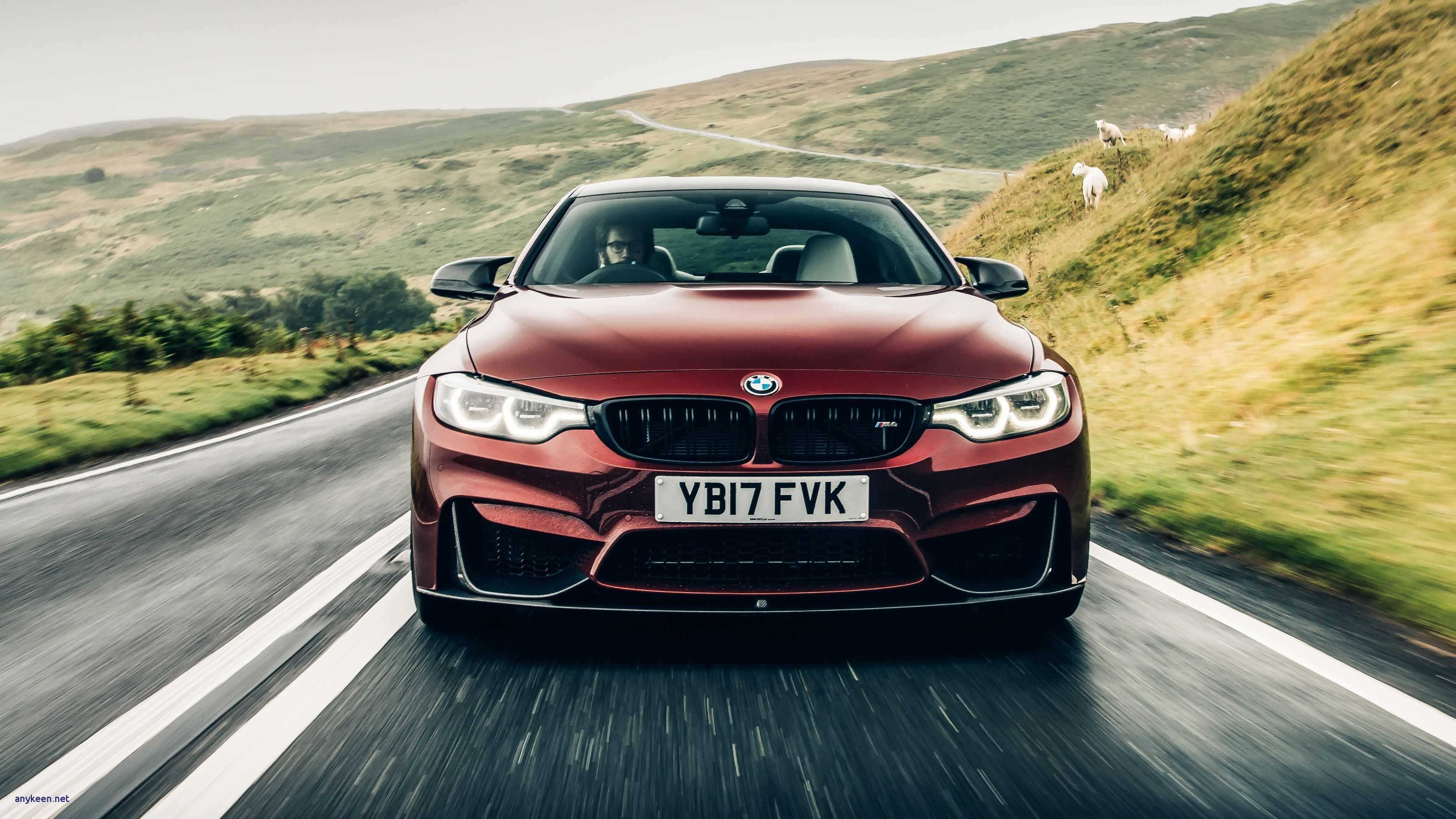 68 The 2019 BMW M4 Colors Ratings