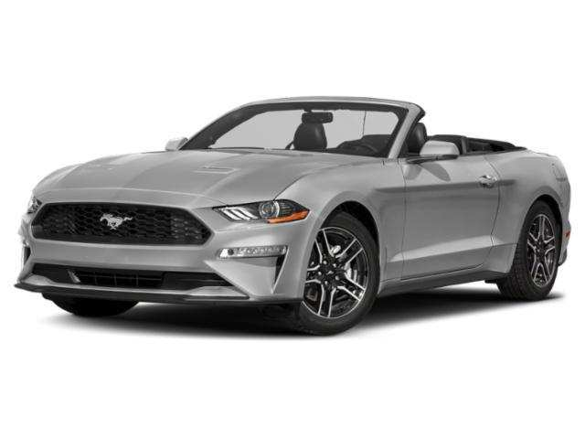 69 The Best 2019 Mustang Mach Review And Release Date