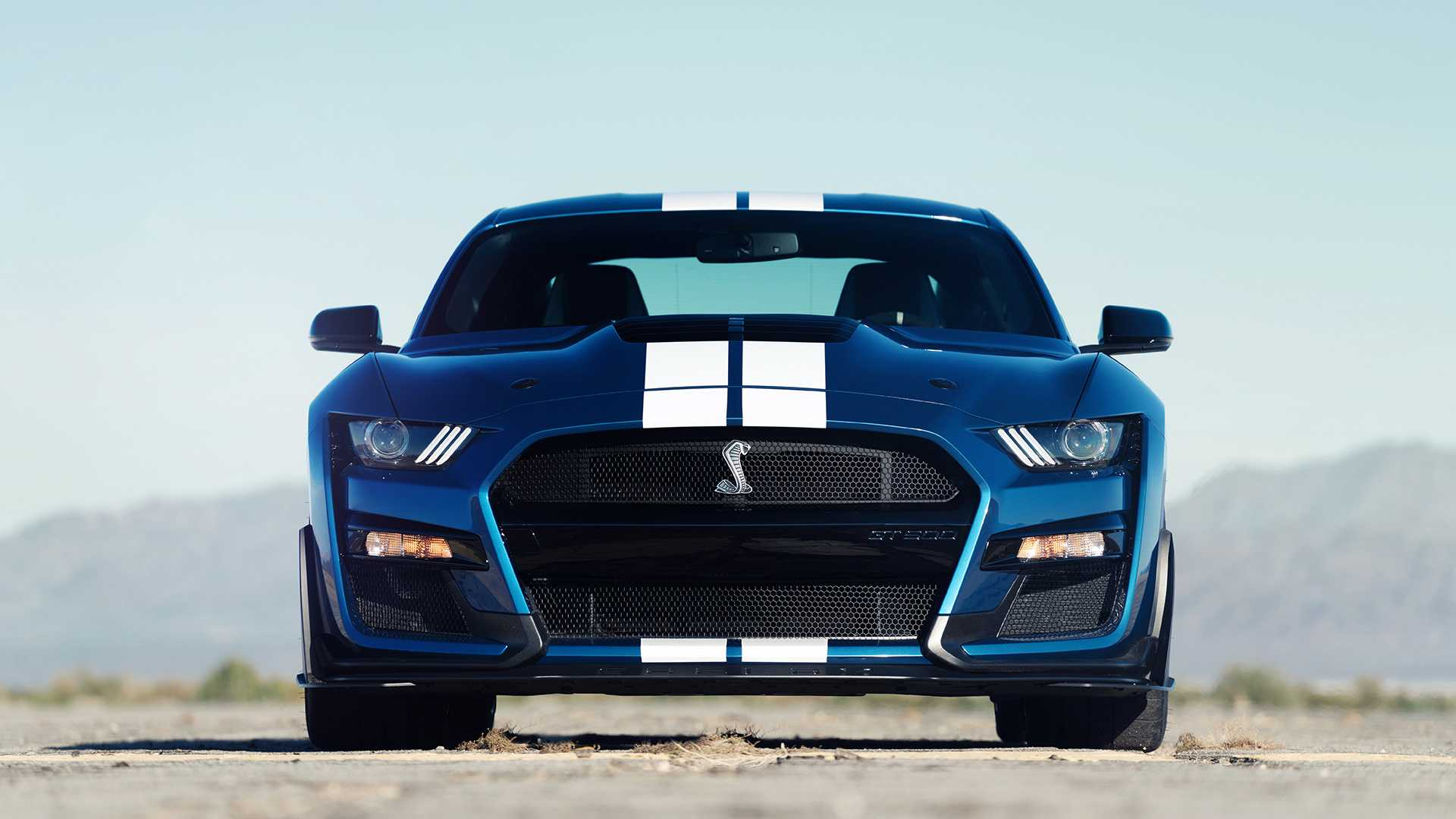 70 The Ford Debuts 2020 Shelby Gt500 New Review
