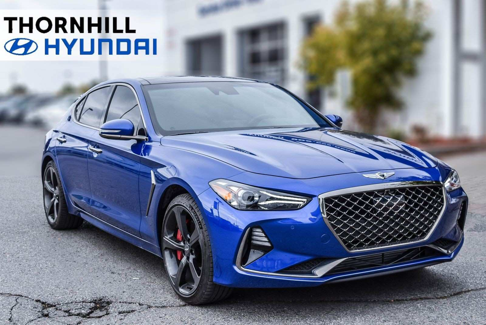 73 New 2019 Hyundai Genesis Reviews