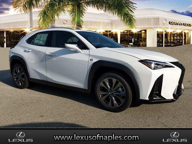89 New 2019 Lexus Ux200 Picture
