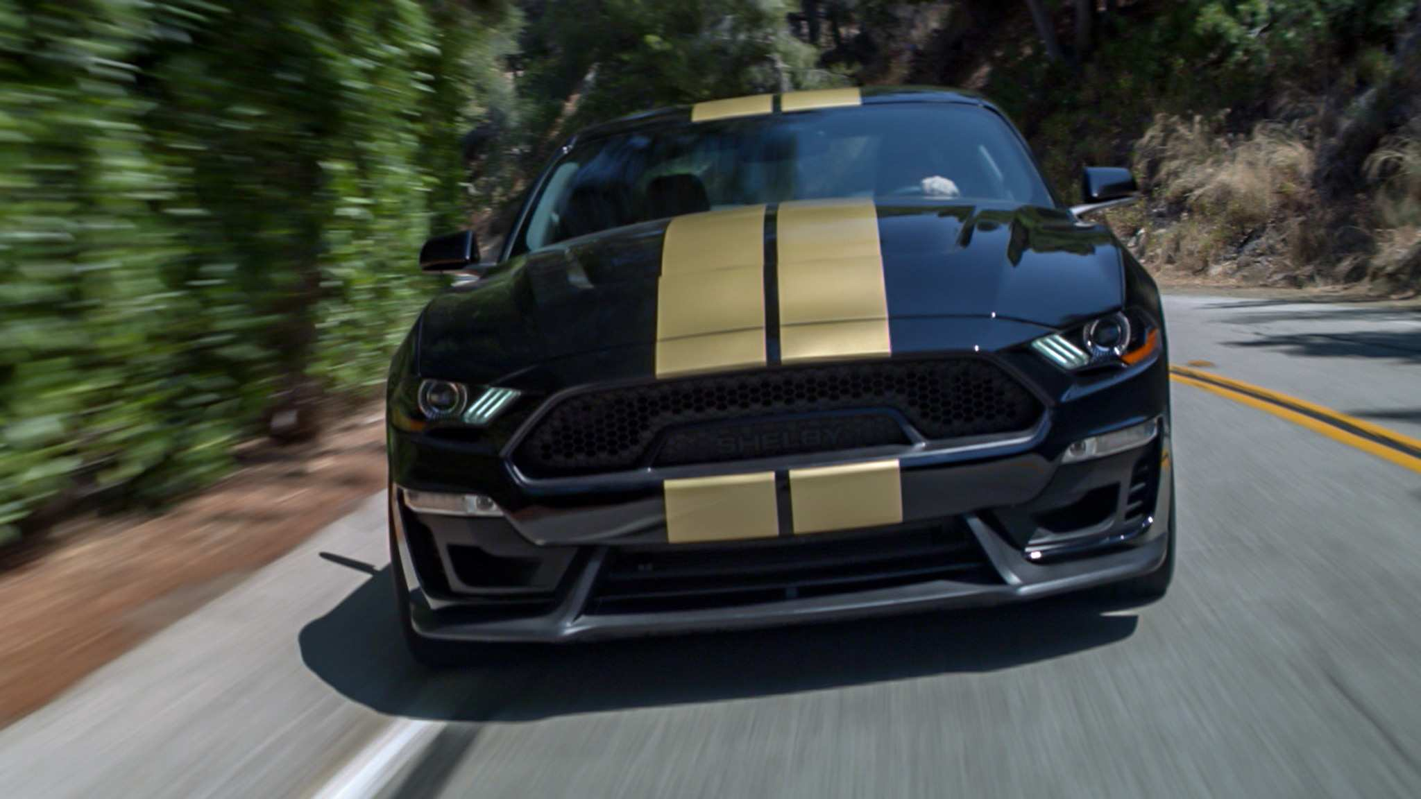 89 The Best 2019 Ford Mustang Gt500 Ratings