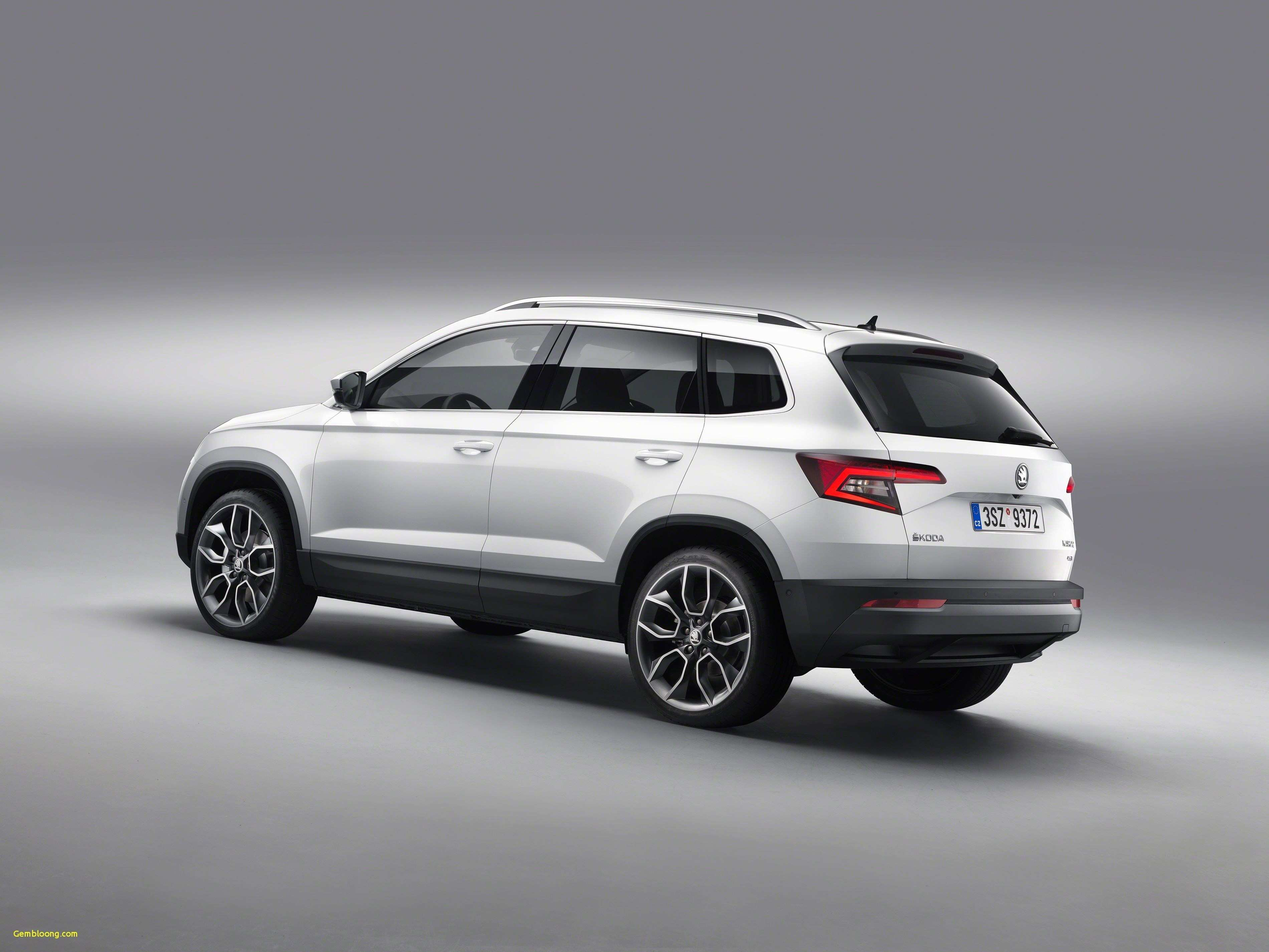 89 The Best 2020 Skoda Snowman Performance