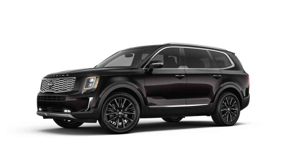 92 New 2020 Kia Telluride Black Copper Interior
