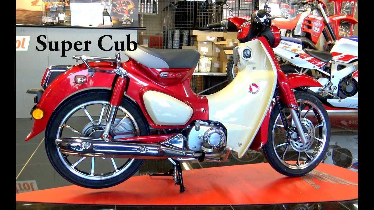 78 New 2019 Honda 125 Cub Overview