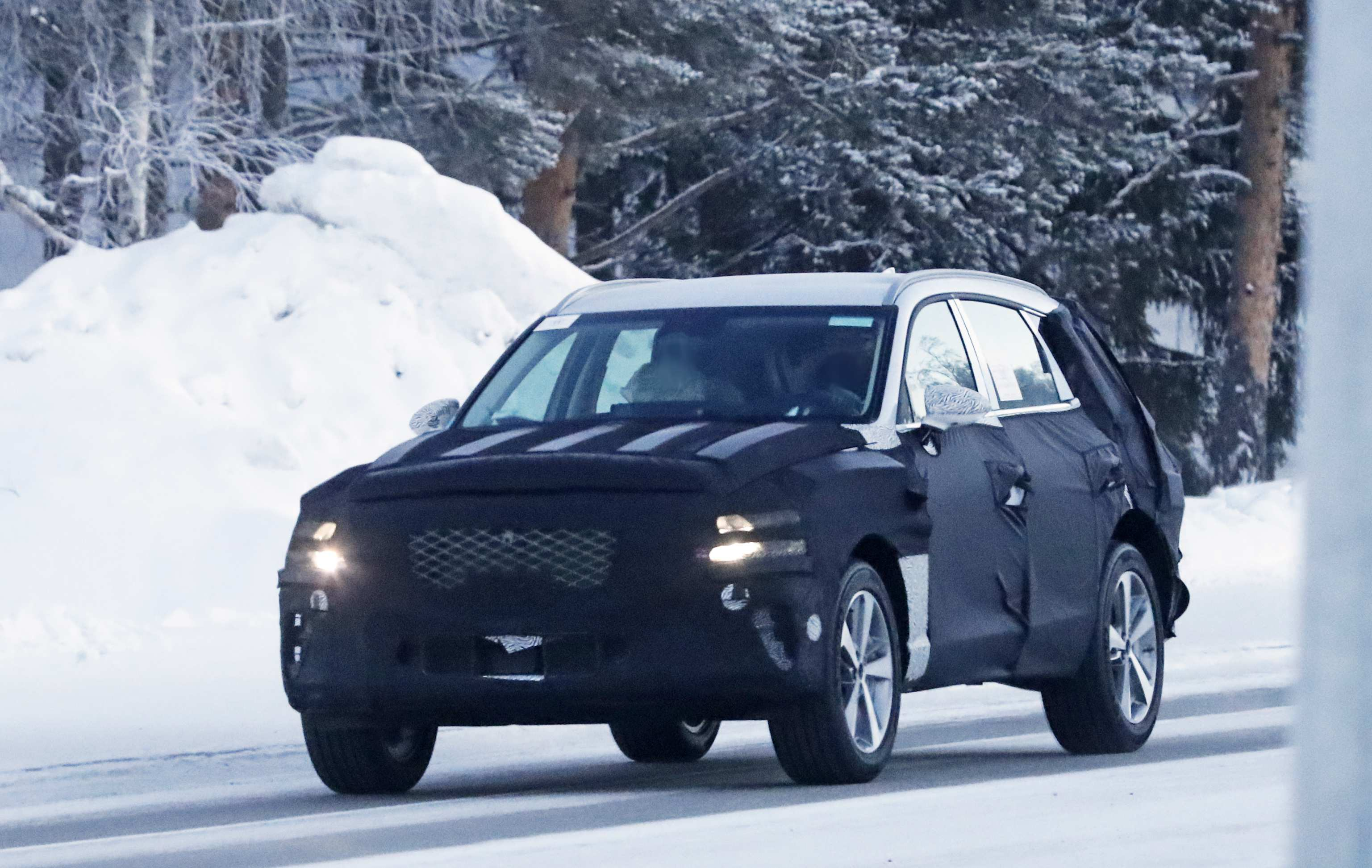 80 The 2019 Genesis Suv New Model And Performance