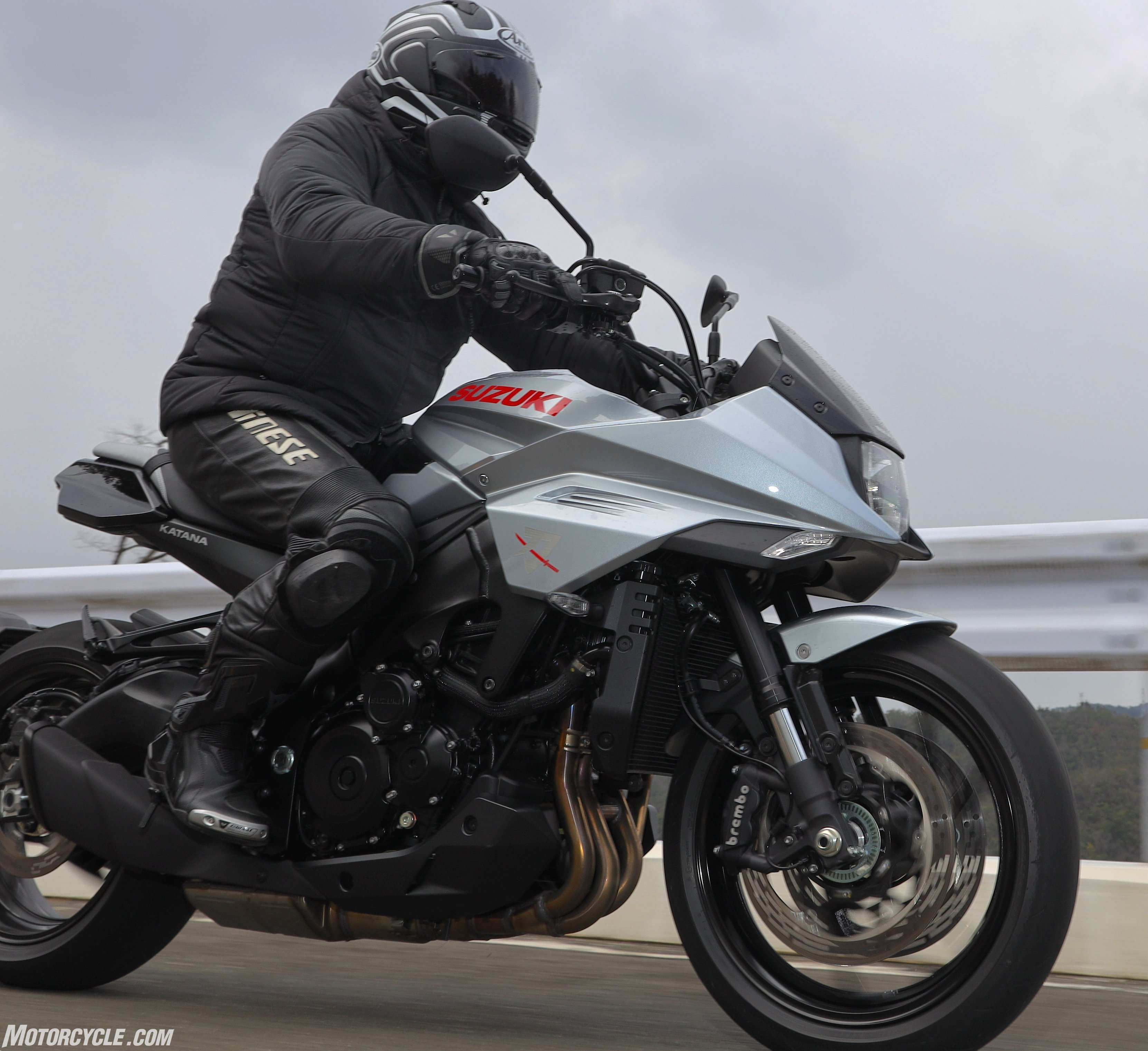96 All New 2019 Suzuki Katana Ratings