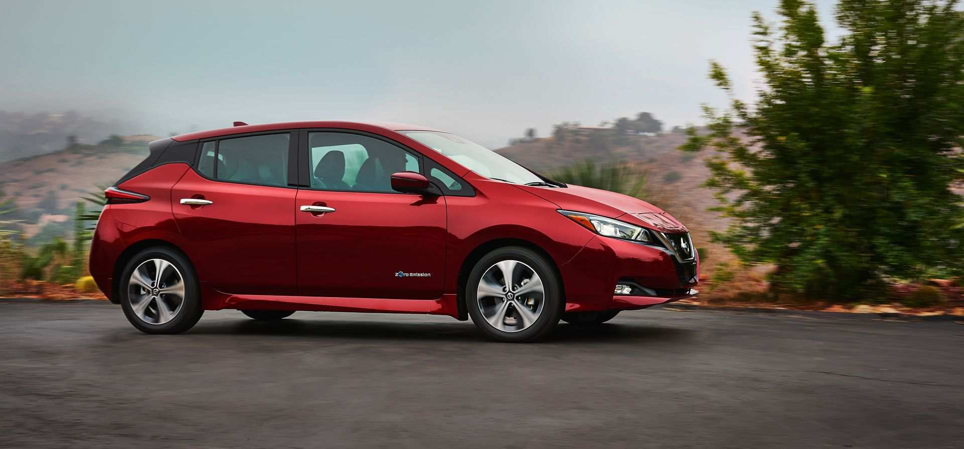 16 A Toyota Leaf 2020 Picture