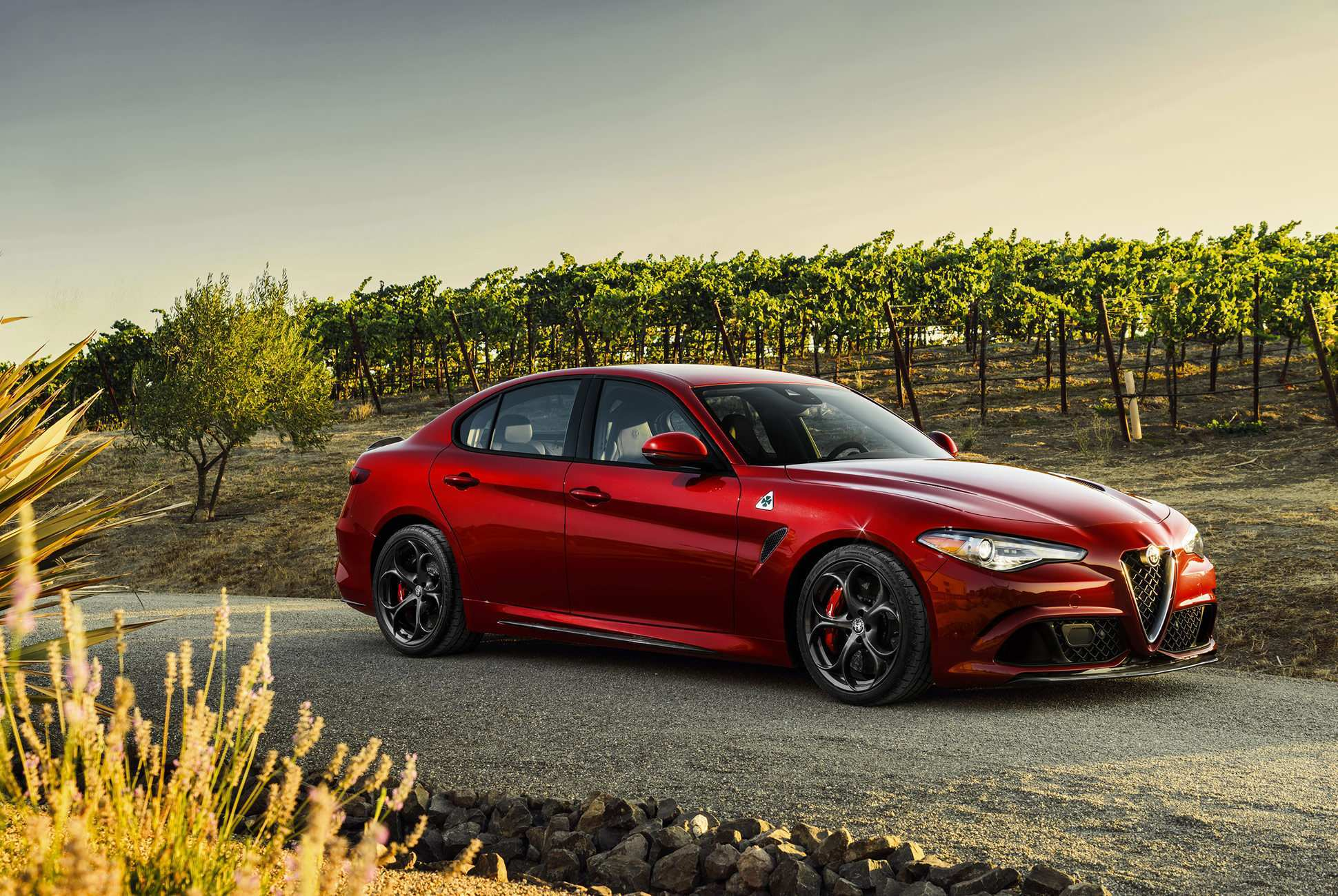 60 All New 2019 Alfa Quadrifoglio Configurations