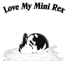 80 Best 2019 Mini Rex Nationals New Model And Performance