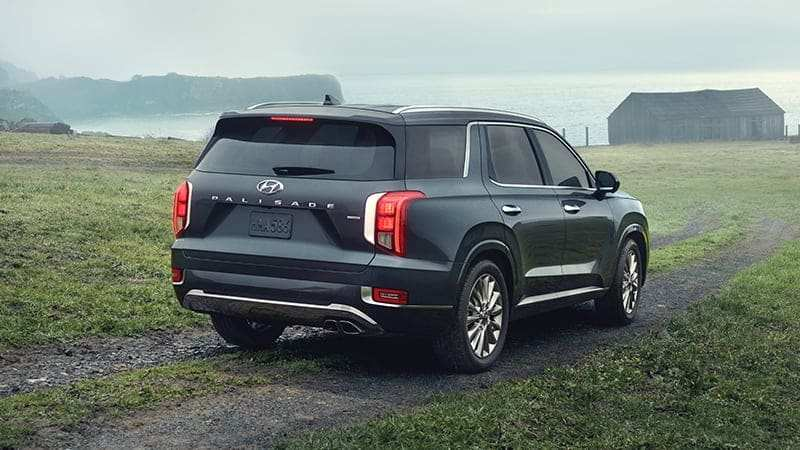 79 All New When Does The 2020 Hyundai Palisade Come Out Specs